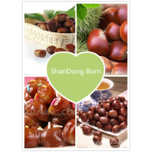 2015 New Crop Chinese Fresh Chestnut