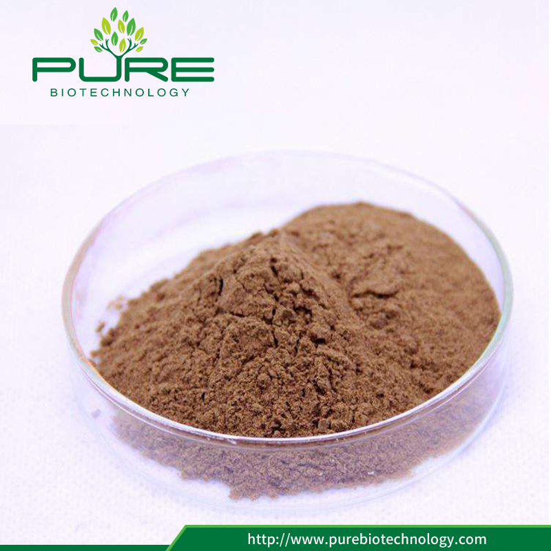High quality maca extract 20:1 /10:1 /4:1