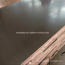WBP Glue Waterproof Plywood Plywood Core Brown Film