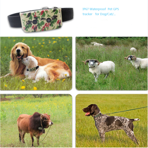 GPS Tracker Dog Cat Pet Collar impermeable
