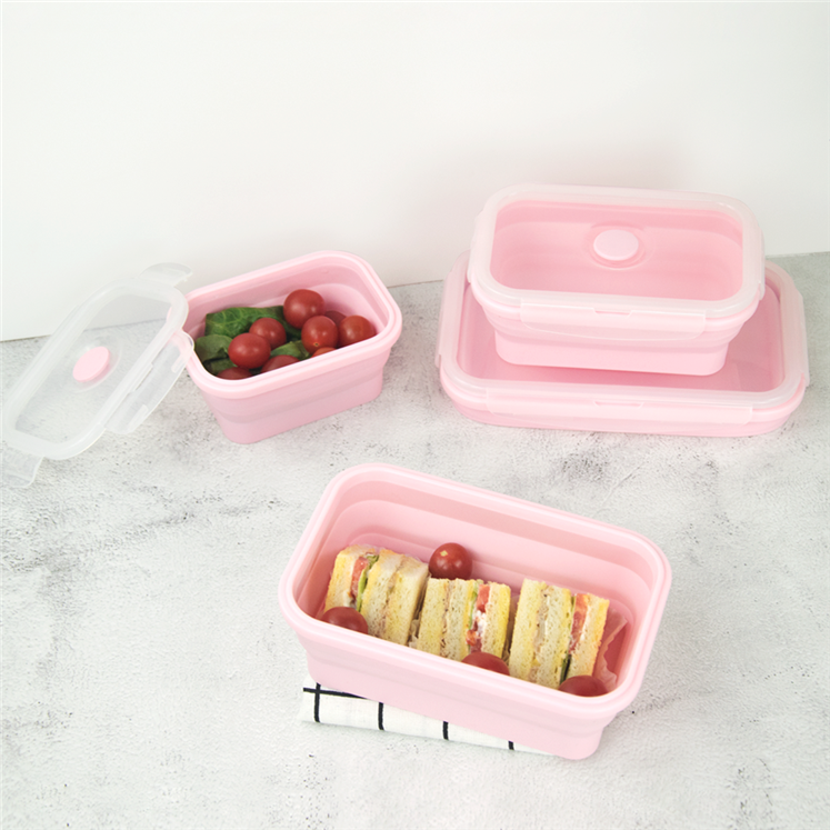 folding lunch box (19)