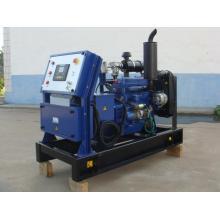 18 years experiences CE standard 10KW biogas generator