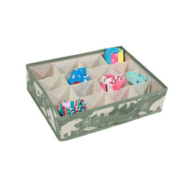 Low Price Storage Box with 16 Compartment