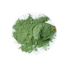 Poudre de brocoli FD végétale de qualité alimentaire de haute qualité