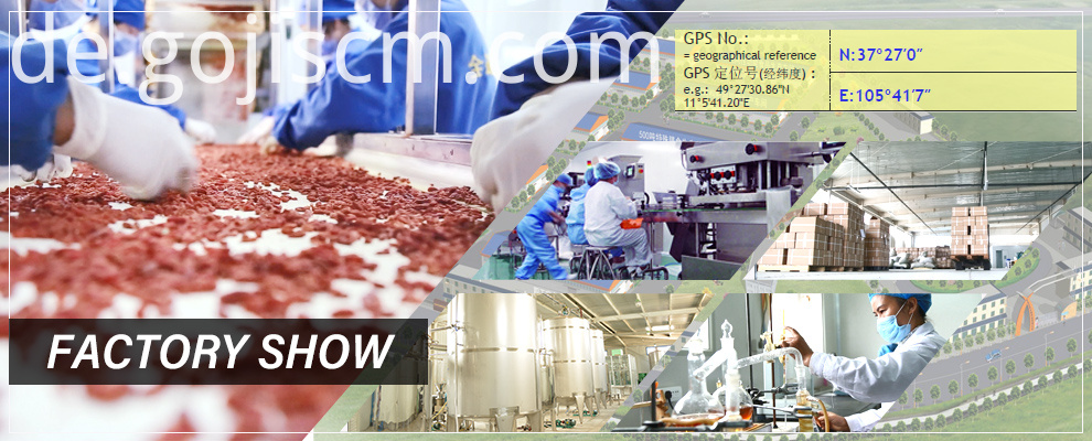 Best Quality Goji Powder factory show