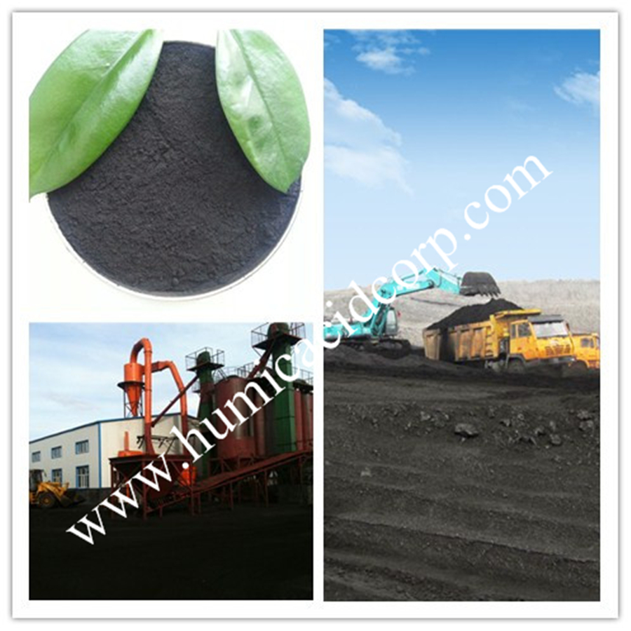 Humic acid Fertilizer For Soil