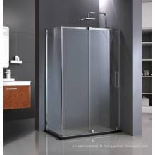 Grande porte de douche HD-1382RW