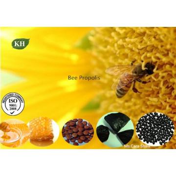 Própolis da abelha, colagem da abelha, extrato da prótese da abelha, extrato purificado da própolis