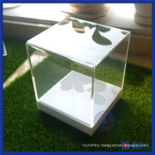 Custom Clear Acrylic Display Cases Box