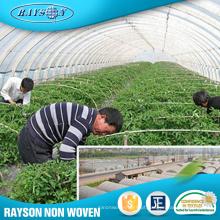 Compra maioria da tela agrícola das estufas da matéria prima de China Spunbonded do Pp