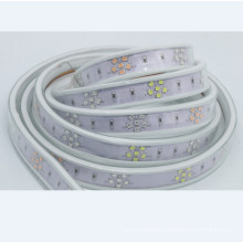 2018 New design Color Changeable Strip lighting for outdoor deco