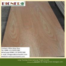 Hochwertiges Okoume Sperrholz für Möbel mit niedrigem Preis