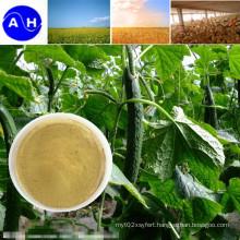 Organic Amino Acids Pure Vegetable Source Amino Acids