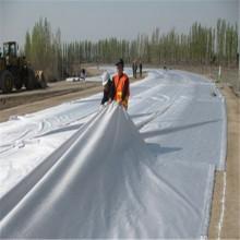 PET/PP Nonwoven Geotextile Fabric
