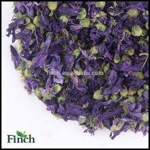 FT-011 Seco al por mayor violeta perfumado flor de hierbas té