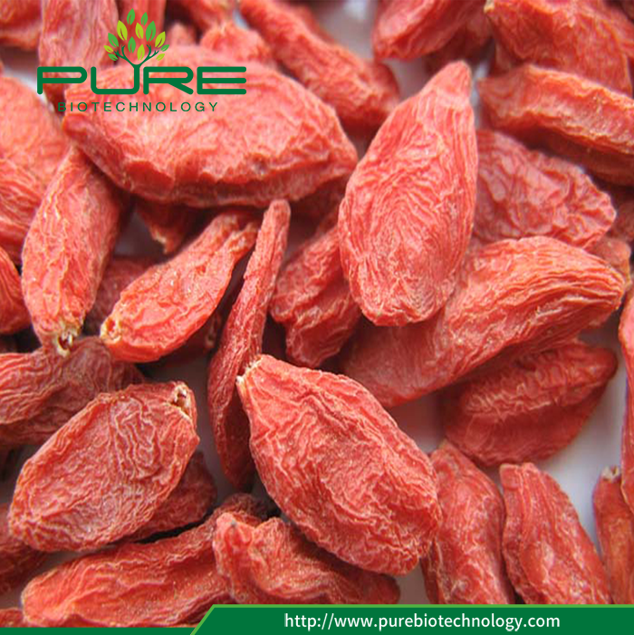 Sun Dried Ningxia Goji Berry 2017 New Crop (4)