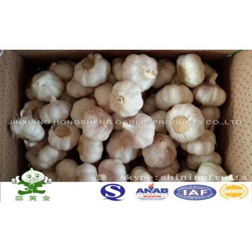 Alho branco normal em caixa de 10kgs Carga Loosely embalagem