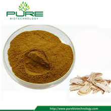 Standar GMP Herbal Angelica Sinensis Extract Powder