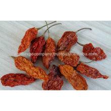hot spicy chilli
