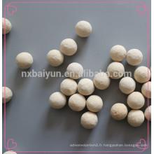Milieux de broyage en céramique 68% Boule d'alumine moyenne