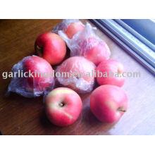 Vender 2010 maçã estrela vermelha