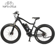 2017 neige chasse vélo Fat pneu électrique VTT