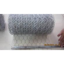 20cm to 50cm Width Hexagonal Wire Mesh