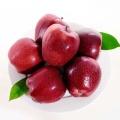 свежие яблоки ганьсу хуаню