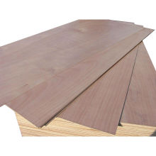 Low Price Construction Grade Plywood with Best Price