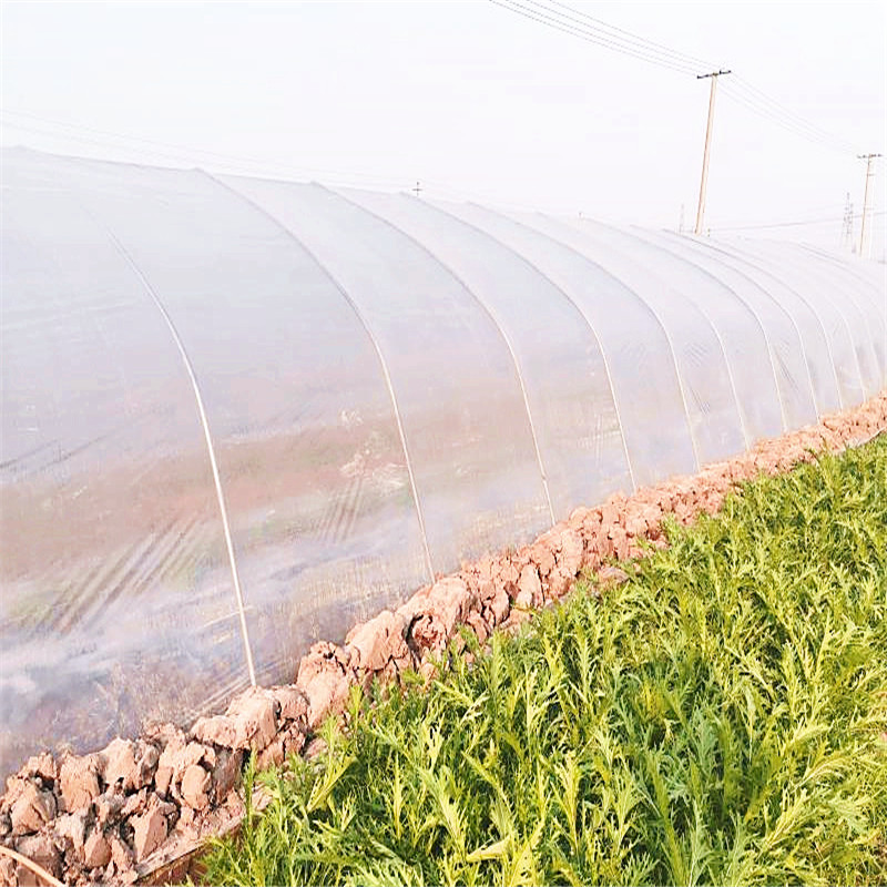 Biodegradable greenhouse plastic film (4)