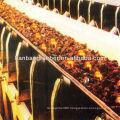 heat-resistant conveyor belt