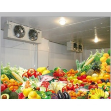 OEM Factory Cold Room and Deep Freezer Cold Room