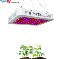 pannello di coltivazione a led 600Watt Double Chips Grow