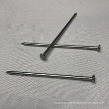 World Popular Standard Galvanized Common Iron Nails Support OEM