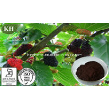 Extracto de fruta de amora Anthocyanidins 10% -25%; Ratio Extract