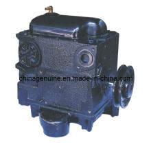 Zcheng Fuel Pump Gear Pump Zcp-Tk2