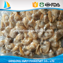 Nouvelle offre congelée nouvelle palourde à col court fournisseur professionnel de fruits de mer