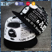 New and hot fashionable embroidery korean snapback hats from China