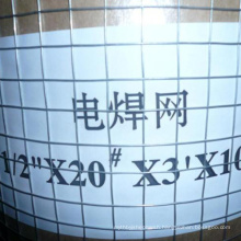Factory products SS welded wire mesh galvanized welded wire mesh