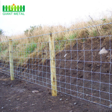 Cheap Galvanized Wire Mesh Farm Field Fence