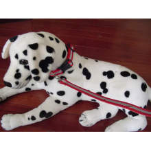 Produits réfléchissants avec accessoires pour animaux de compagnie