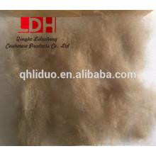 fibre de cachemire kirghize de bonne qualité pour 17.5mic type de fibre de cachemire épilé