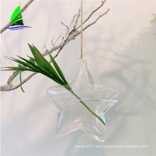 Flor en forma de estrella Flor de cristal que cuelga floreros hidropónicos