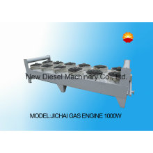 Jichai Gas Radiator with Muti Fan (1000W)
