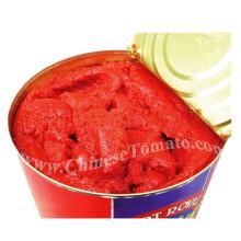 Gino Brand Pasta de Tomate Enlatado Saludable de Alta Calidad