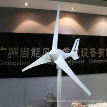 Gerador de turbina de vento eficiente 24V 300W três lâminas