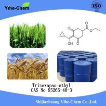 Trinexapac-ethyl Plant growth regulator