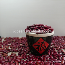 Venda quente qualidade Natural Brown Inglês feijão vermelho com Melhor qualtiy