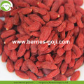 Low Sugar Natural Nutrition Sweet Convencional Bayas de Goji