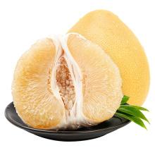 2021 Natural Fresh Grapefruit For Wholesale Chinese Sweet Honey Pomelo